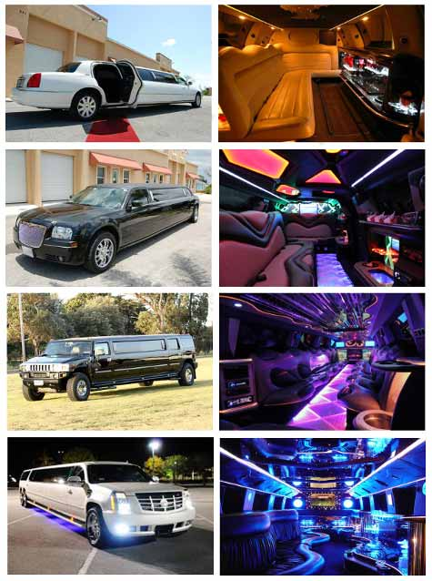 Best Limousine Service South Miami FL